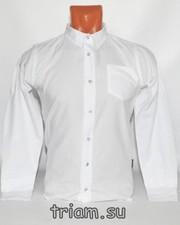 Школьные рубашки для мальчиков оптом в Белоруссии