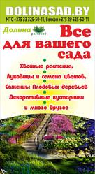 Купить растения в Гродно. Каталог,  Доставка,  Гарантия.