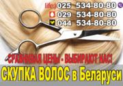 Купим волосы по самым высоким ценам в Гродно.