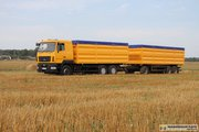 Перевозка зерна,  зерновозы,  самосвалы,  аренда